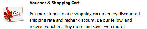 Voucher and Shipping Cart